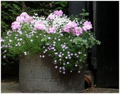 love the delicate flowers and color with the old galvanized container...: