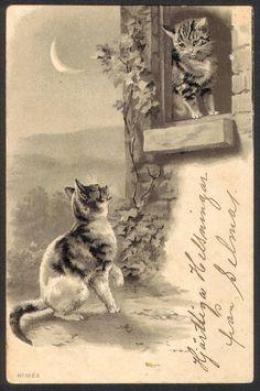 Vintage Finnish postcard (1901)