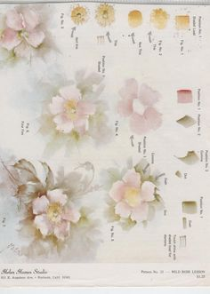 Wild Rose Lesson 25 by Helen Humes China Painting Study | eBay
