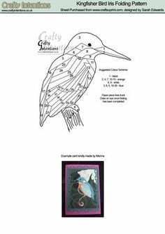Kingfisher Bird Iris Folding Pattern on Craftsuprint designed by Sarah Edwards - Kingfisher Bird Iris Folding Pattern - Now available for download!