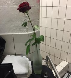 a nice surprise at the venue shower room. A working heating would be even nicer  #axelritt #the_real_ironfinger #rose #bathroom #flower