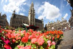 Flower market Grand-Place