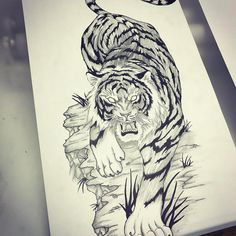 Tiger design for an upcoming sleeve. Can't wait to start it! Looking to do more big projects, give me an email or DM me for inquiries! Tiger Sketch, Tiger Drawing, Tiger Art, Dibujos Tattoo, Desenho Tattoo, Body Art Tattoos, Tattoo Drawings, Tattoo No Peito, Samurai Tattoo