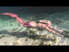 Mermaid Tails from the Mertailor : tail by Eric J. Ducharme, filmed & edited by Tracy Colson