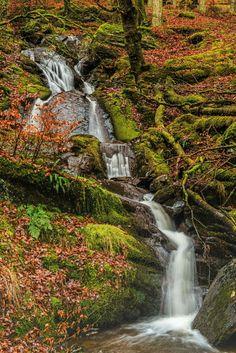 Nant Gwyllt waterfall,  Elan Valley