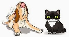 Ottawa Valley Dog Whisperer : Food Allergies in Dog, Cats – Causes, Symptoms, Natural Treatments