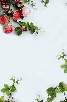 Romantic flowers poster background Background Image