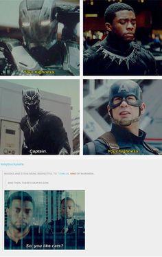 Marvel Jokes, Funny Marvel Memes, Dc Memes, Avengers Memes, Marvel Dc Comics, Avengers Tumblr Funny, Marvel Tumblr, Bucky, The Avengers