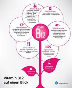 Vitamin Infografik - Estella K. - New Ideas Vegan Vitamin B12, Vitamin C Foods, Vegan Vitamins, Vitamine B12, Diet Books, Alkaline Diet, Good To Know, Healthy Life, About Me Blog