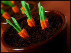 Carrot Patch Dirt Cups using oreos, chocolate pudding, & rainbow twizzlers