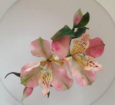 Curso monográfico de flores tropicales de bouQuet de sucre /tropical sugar flower bouquet