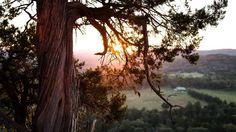 Sunset in Eureka Springs can u canoe cabins