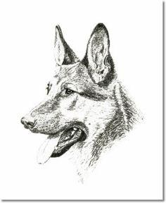 German Shepherd Dog aka the Alsatian Wolf Dog-http://germanshepherdsetc.com/german-shepherd-aka-alsatian-alsatian-wolf-dog/