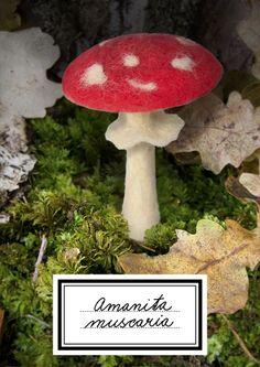 ~ Amanita muscaria brooch; felted mushroom made by KABINET X