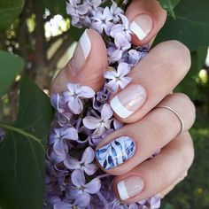 These are French Tip White Wraps with Copenhagen Wrap on the ring finger. Jamberry Combos, Jamberry Nail Wraps, Cuticle Care, Nail Care, Manicure Images, Ring Finger, Manicure And Pedicure, Signature Style, Face And Body
