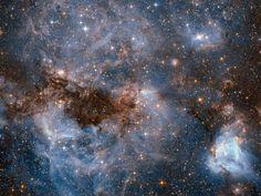 Elke week delen de Amerikaanse ruimtevaartorganisatie NASA, de Europese…
