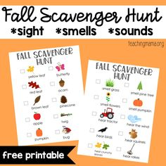 A fall scavenger hunt for kids. Children will look for fall items, listen for sounds, and smell items in nature. This free printable is perfect for fall. Kindergarten Scavenger Hunt, Toddler Scavenger Hunt, Picture Scavenger Hunts, Outdoor Scavenger Hunts, Kindergarten Lessons, Autumn Activities For Kids, Fall Preschool, Fall Crafts For Kids, Preschool Activities