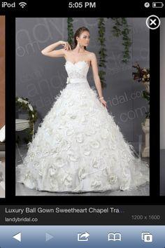 Wedding dress ($3500)