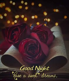 Good Night Images Hd, Good Night Quotes, Good Knight, Evening Quotes, Good Morning Flowers, Sweet Dreams, English Language, Blessings, Beautiful