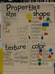 Science anchor chart for observation