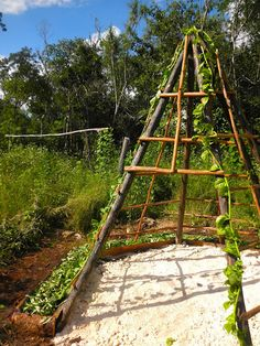 A neat idea. Grow a climbing plant over a teepee structure, and have a shady place for kids to play in.