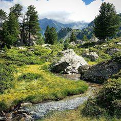 Small river #jardinjaponais #nendaz #valais #switzerland #visitvalais #igersuisse #igernendaz #alpes #valaiswallis #inlovewithnendaz #nendazisbeautiful #suisse #switzerland #swissmountains #montagnes