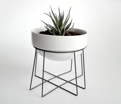 "geometric plant stand ""spider"" with a ceramic white flower pot 