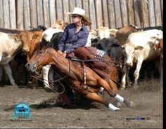If youve ever rode a working cow horse you will understand the beauty in this! Holy hell!