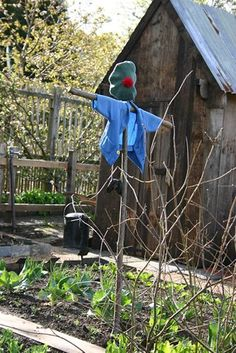 Mr. McGregor's Garden