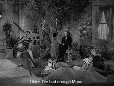 i think i've had enough moon.