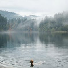 Kinfolk | Lake Merwin