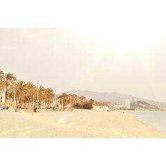 #badalona #barcelona #beach #playa #palmtrees #palm #palmasdelmar #meencanta by heytheredaisy.blog