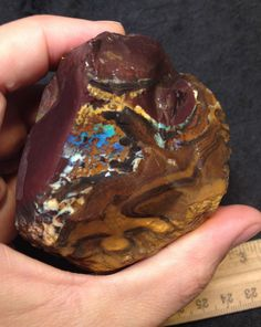 Huge Solid Boulder Opal Rough Piece-Very Fiery! 242 Grams-Estate Find. Gorgeous!