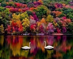 Hampshire jesienią, Anglia