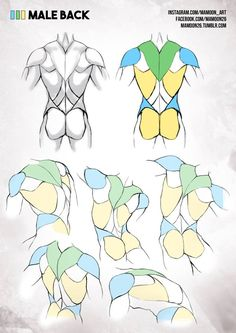 Simplified Anatomy by Mamoon26