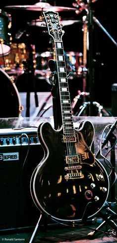 "B.B. King's ""Lucille"" Custom Gibson ES-355 ... This stunning photograph was taken at the National Arts Centre (NAC) in Ottowa, Ontario, Canada on May 27, 2012. © Ronald Santerre