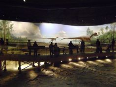 Walk Through Time at Dinosaur State Park in Rocky Hill