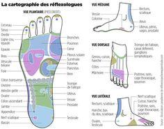 carte des pieds schema reflexologie plantaire pour se masser les pieds et faire du bien a tout. Black Bedroom Furniture Sets. Home Design Ideas