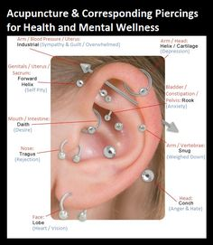 I like the visual of the helix/cartilage ring near to the industrial, particular…, - Belly Button Piercing Ear Piercings Chart, Different Ear Piercings, Ear Peircings, Types Of Ear Piercings, Cute Ear Piercings, Body Piercings, Unique Piercings, Tongue Piercings, Piercing Eyebrow
