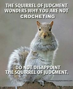 Squirrel of Judgment art room sign Animal Memes, Funny Animals, Cute Animals, Animal Antics, Funny Cats, Art Memes, Art Quotes, Art Sayings, Motivational Quotes