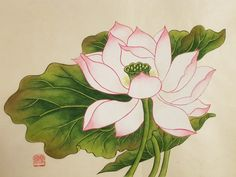 연화도(완성) : 네이버 블로그 Sunflower Pictures, Water Lilies, Chinese Painting, Silk Painting, Quilt Tutorials, Botanical Prints, Indian Art, Traditional Art, Pencil Drawings