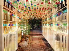 888個の風鈴が並ぶ幻想的な光景。川越氷川神社の『縁むすび風鈴』