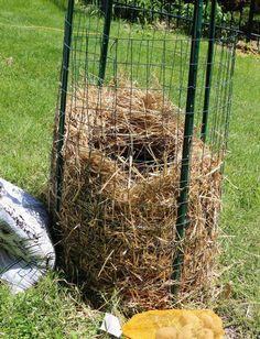 Больше не покупайте картошку. Новый метод выращивания нескончаемого запаса картошки прямо у Вас дома! – БУДЬ В ТЕМЕ