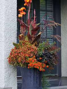 Traditional Landscape Design, Pictures, Remodel, Decor and Ideas - page 108