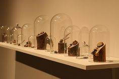 Curio Glass Cloches containing object jewelry by Hannah Ferrara