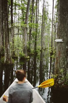 Charleston, SC swamp. Canoe. Cypress gardens. Things to do in Charleston. Editorial photography. Travel photos. Southern living. Q Avenue Photo.