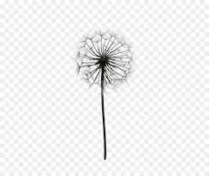 Image result for dandelion black and white clip art Tats With Meaning, Tatting, Dandelion, Clip Art, Black And White, Flowers, Plants, Image, Black N White