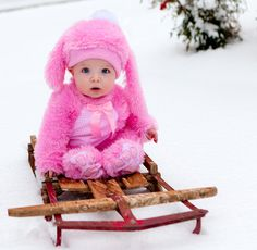 Well, this is just adorable. Baby bunny on a sled.