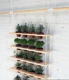 diy projekte pflanzenregal vertikal hängender garten