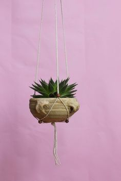 Modern Hanging Planter with fully adjustable wooden beads to fit any size pot or planter.  Browse the collection @ Greenarium.uk